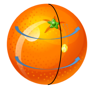 Orange polar